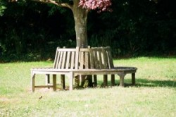 Recreation Ground Seating